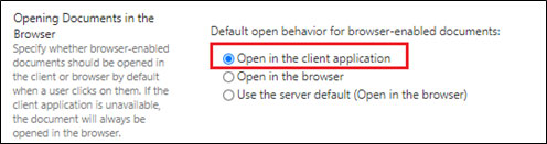 Opening Document in Client Application